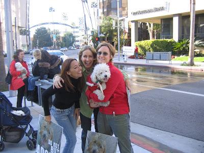 LA News – Posh Puppy Store in Beverly Hills Shutdown