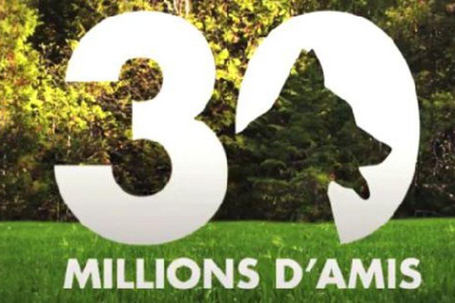 """Emission """"30 millions d'amis"""" France 3 Côte-d'Azur"""